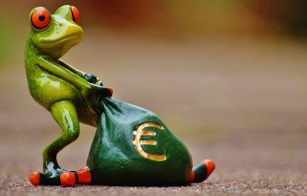 frog-1234781_1920