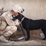 soldat-chien-zoophilie-militaire-150x150 Suite au scandale sexuel en Haïti, des milliers de bénévoles postulent chez Oxfam