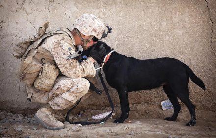 soldat-chien-zoophilie-militaire