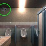 """wc-video-camera-toilettes-publique-autorise-1-150x150 Donald Trump à Riyad : """"Voici la preuve que je ne suis pas raciste, j'ai un ami arabe"""""""