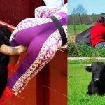 corrida-torero-ami-taureau-adopte-1-150x150 Chili : un mort lors d'une Hipporrida, cette sorte de corrida qui se pratique avec des hippopotames