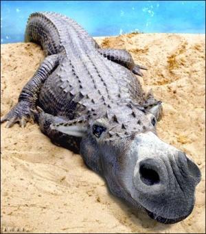 animal-hybride-animaux-zoologie-fake-photoshop-invente-23-300x341 Zoologie hybride et nouvelles espèces d'animaux