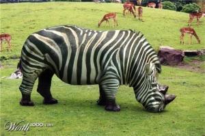 animal-hybride-animaux-zoologie-fake-photoshop-invente-7-300x199 Zoologie hybride et nouvelles espèces d'animaux