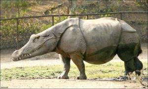 animaux-hybride-zoologie-faux-photoshop-fake-15-300x180 Zoologie hybride et nouvelles espèces d'animaux