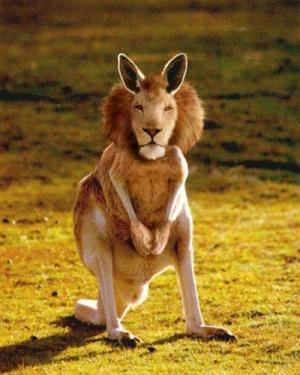 faux-animaux-hybrides-invente-fake-photoshop-14-300x375 Zoologie hybride et nouvelles espèces d'animaux
