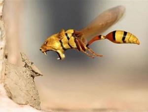 faux-animaux-hybrides-invente-fake-photoshop-18-300x228 Zoologie hybride et nouvelles espèces d'animaux