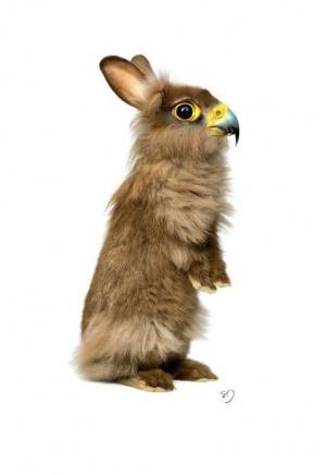 faux-animaux-hybrides-invente-fake-photoshop-34-300x436 Zoologie hybride et nouvelles espèces d'animaux