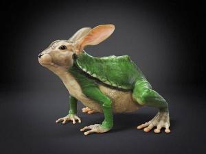 faux-animaux-hybrides-invente-fake-photoshop-47-300x225 Zoologie hybride et nouvelles espèces d'animaux