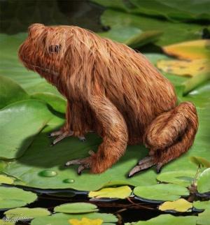 faux-animaux-hybrides-invente-fake-photoshop-56-300x322 Zoologie hybride et nouvelles espèces d'animaux