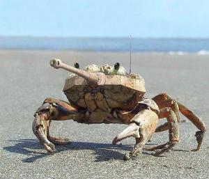 faux-animaux-hybrides-invente-fake-photoshop-66-300x257 Zoologie hybride et nouvelles espèces d'animaux