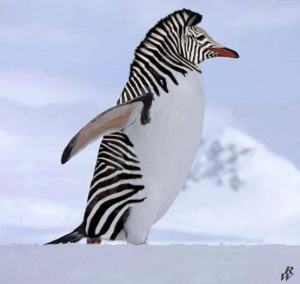 faux-animaux-hybrides-invente-fake-photoshop-86-300x284 Zoologie hybride et nouvelles espèces d'animaux