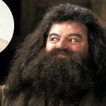 hagrid-harry-potter-150x150 L'imam Chalghoumi accusé de viol et d'agression sexuelle par Murielle Bolle