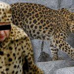 manteau-fourure-leopard-violer-zoo-150x150 Horreur au zoo de Maubeuge : un dromadaire mange une visiteuse qui prenait un selfie