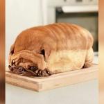 pain-chien-chine-chinois-cruaute-mange-150x150 250 moines coréens se font incinérer vivants pour rendre hommage à leur chien décédé qui incarnait le fondateur du temple