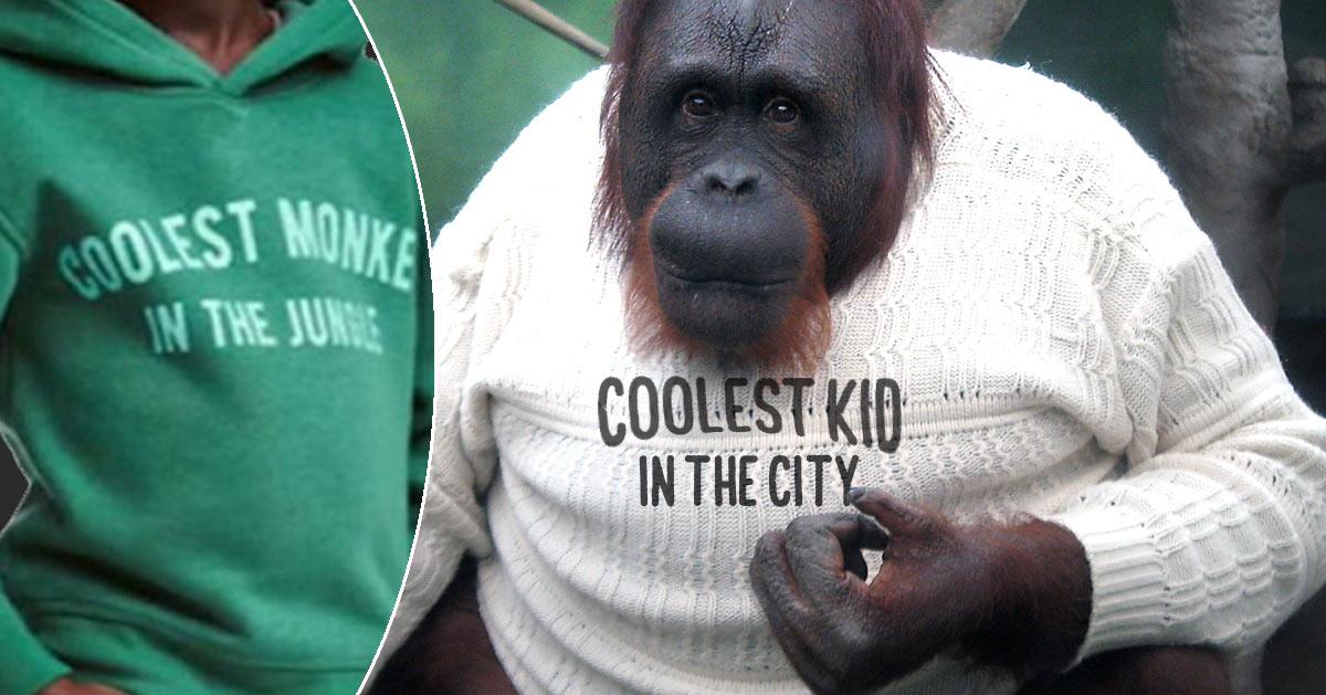 H&M remplace l'enfant par un vrai singe sur le sweat-shirt jugé raciste