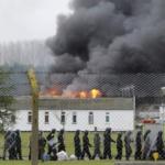 pedophiles-prison-meurent-150x150 Exobioterrorisme : d'étranges créatures découvertes dans les décombres de la tour incendiée à Londres