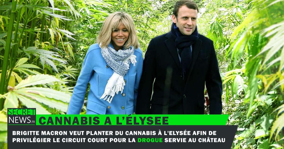 cannabis-macron-elysee-drogue-1 Brigitte Macron a-t-elle menti sur son âge ? Wikileaks dévoile des documents d'identité compromettants