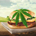cannaburger-cannabis-burger-marijuana-150x150 Galaxy Note 7 : Radioactivité et danger d'explosion atomique !