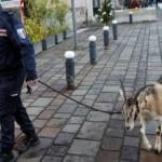 chevre-police-drogue-150x150 Lyon : Un enfant de 12 ans à la tête d'un important réseau de prostitution
