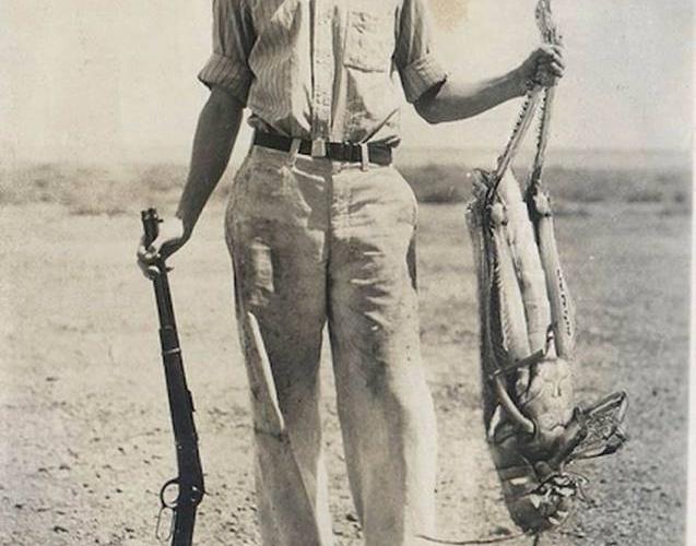 Chasse aux sauterelles géantes en 1937