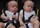 Les prénoms «Copié» et «Collé» validés par l'état civil pour deux jumeaux