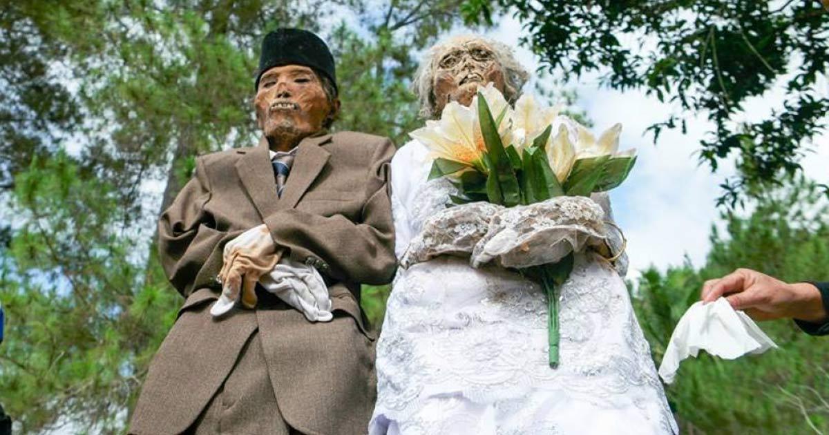 """mariage-morts-chine-1 Ils se diront """"Wouf !"""" - Elle se marie avec son chien pour la Saint-Valentin (Norvège)"""