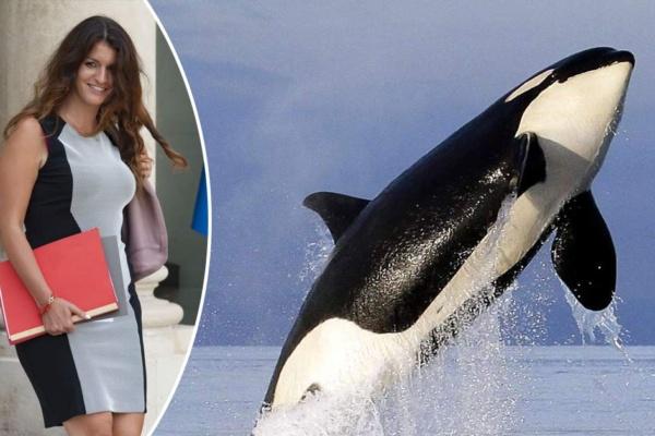 Marlène Schiappa porte une robe en peau d'orque et se fait sèchement recadrer par sa maman écologiste