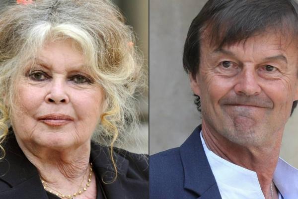 Orly : violente bagarre entre Brigitte Bardot et Nicolas Hulot  : plusieurs vols retardés