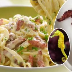Italie : un restaurant chinois propose des pâtes à la carbonara aux hippocampes