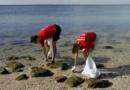 En Europe, le service militaire remplacé par un service écologique obligatoire pour les jeunes de 19 à 25ans