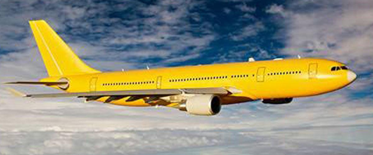 Les Gilets Jaunes affrètent un avion et vont défendre leur cause à Genève