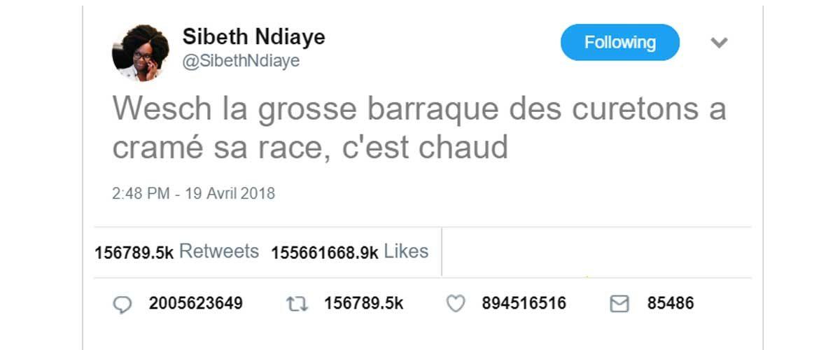 """""""Wesch la baraque des curetons a cramé"""" : Sibeth Ndiaye rend hommage à Notre Dame"""
