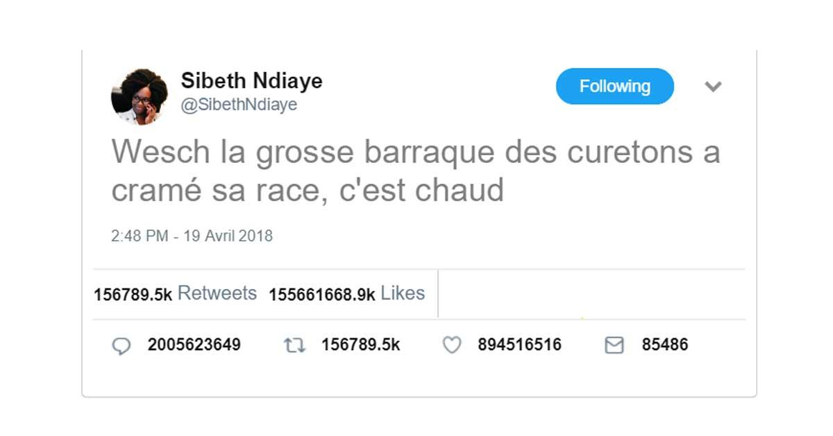 «Wesch la baraque des curetons a cramé» : Sibeth Ndiaye rend hommage à Notre Dame